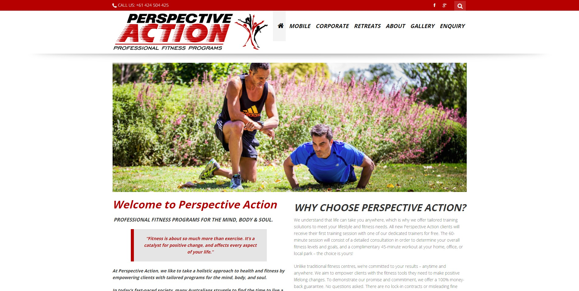 Website for Perspective Action